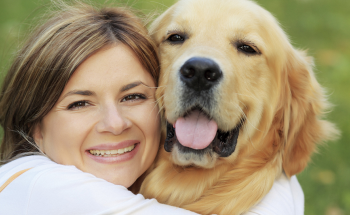 Alles Over De Hond